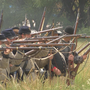 Union Gap's 'Old Town Days' brought Civil War to life