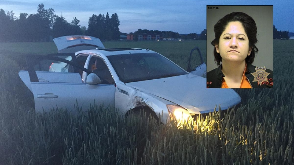 Driver caught after crashing through gate at Hillsboro Airport - Photos from Hillsboro Police.jpg