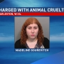 Police: Woman charged with animal cruelty after dead cats found in refrigerator