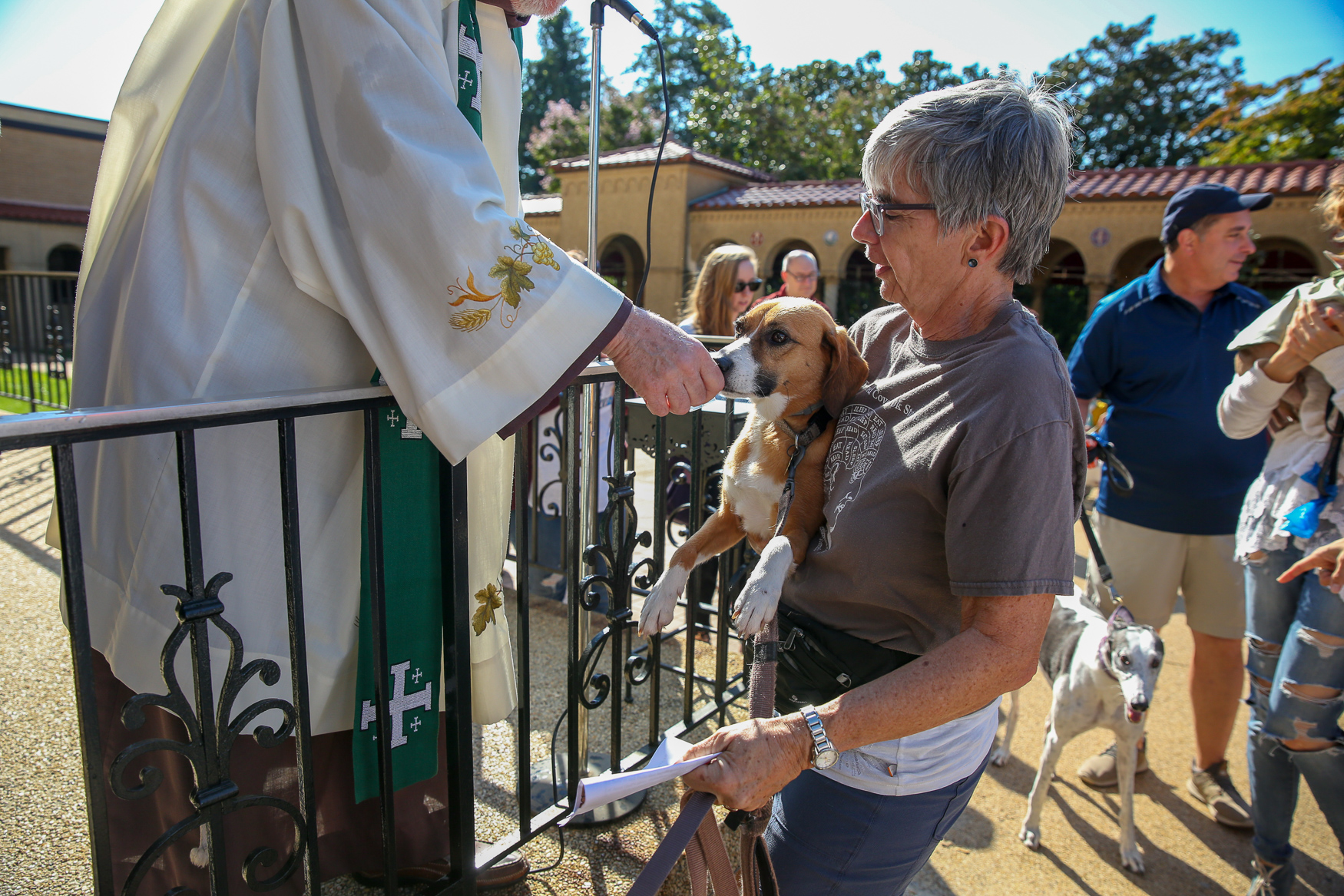 On the morning of Saturday, September 29, the parking lot of the{ }Franciscan Monastery of the Holy Land in America in Brookland was filled with animals of all shapes and sizes. Dozens of dogs and cats, plus a hamster, a bunny and a betta fish, received a blessing from Father Jim Gardiner, SA. The service is conducted annually as a way to celebrate the life of Saint Francis of Assisi, who is best known for his love of animals. The animals' owners sang hymns and prayed before the crowd was showered with holy water. Each animal was then brought forward to receive{ }a special Catholic medal. (Amanda Andrade-Rhoades/DC Refined)