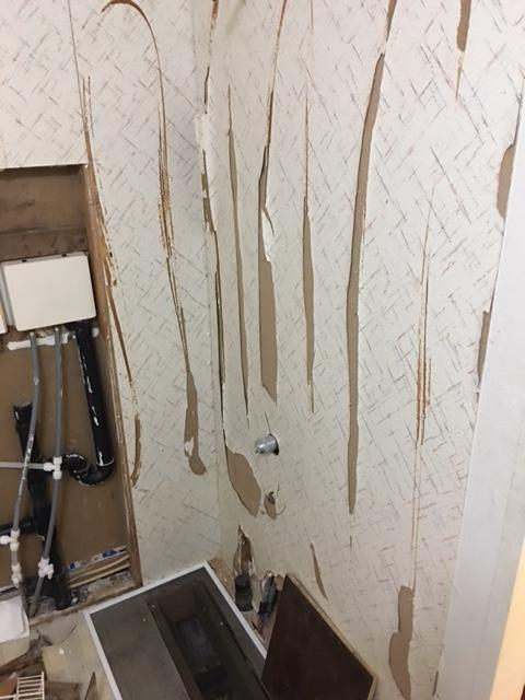 When we posted that our friends at Bath Fitter N.W. wanted to spruce up a viewer bathroom with a shower or tub upgrade - we weren't sure they response we'd get. But the photos have flooded in, all requesting that they be picked for Bath Makeover! Take a look at these viewer photos, and let us know who you think deserve the #BathUpgrade!  (Image: Rosalie Maxworth)