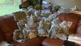 Police seize 72 lbs of marijuana, prescriptions in drug bust near Madison