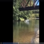 Sheriff to press charges after 4-year-old thrown from bridge