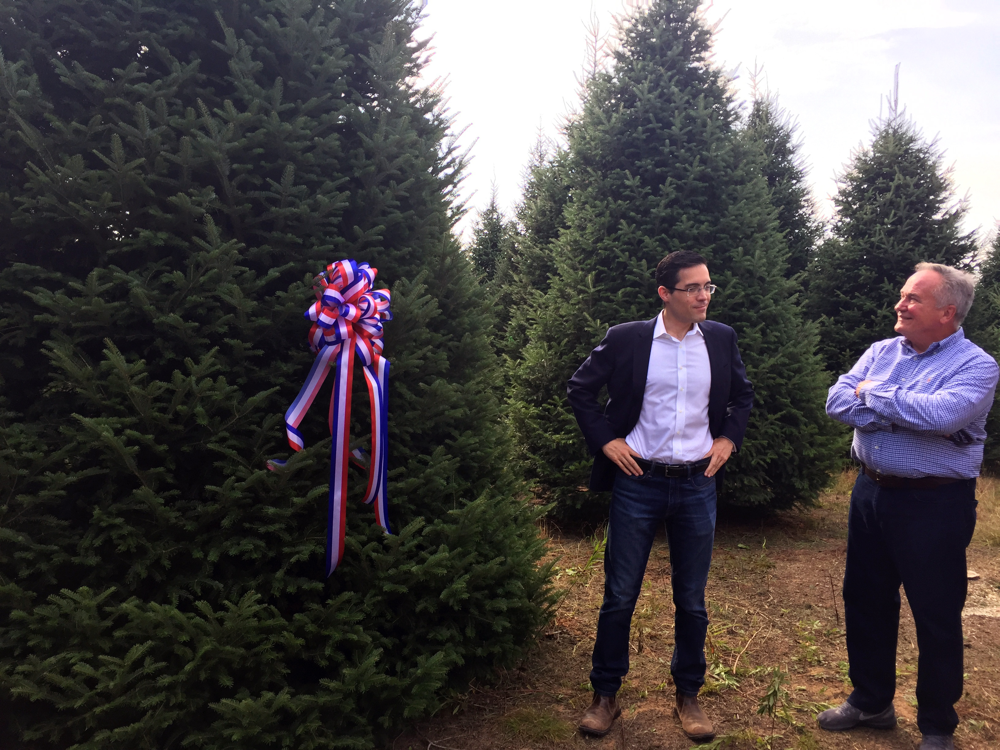 Timothy Harleth, chief usher for the White House (left), discusses the tree chosen as the Blue Room Christmas tree with Jim Chapman of Silent Night Evergreens, Sept. 25, 2017, at Hanauer's Tree Farms in Shawano County. (WLUK/Pafoua Yang)