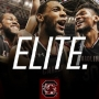 Gamecocks advance to Elite 8