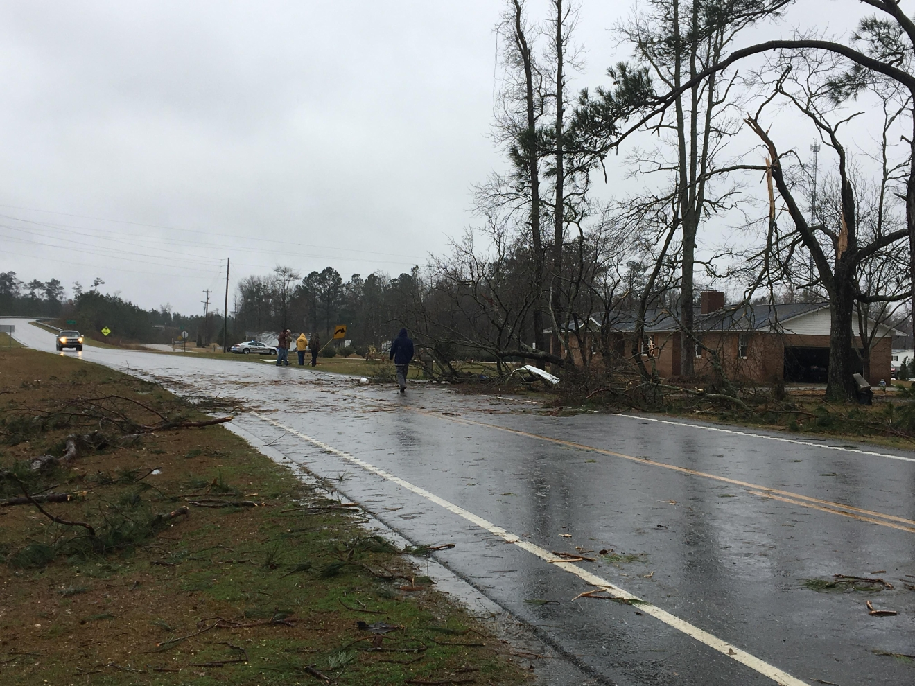 Trees down after a strong storm moved through the area Wednesday afternoon. (Summer Dashe/WPDE)