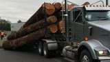 I-5 on-ramp at Exit 124 southbound closes in Roseburg after log truck loses load