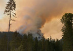 180809_pio_maple_fire_01_1200.jpg