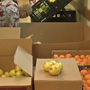 Free program offers relief for families with food insecurities
