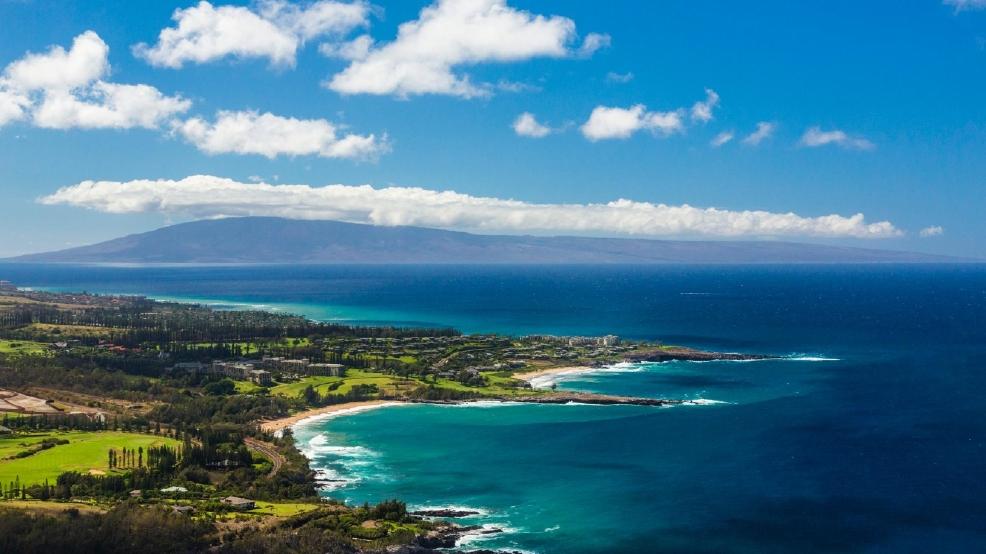 Hawaii reassures tourists after brain parasite cases   KOMO