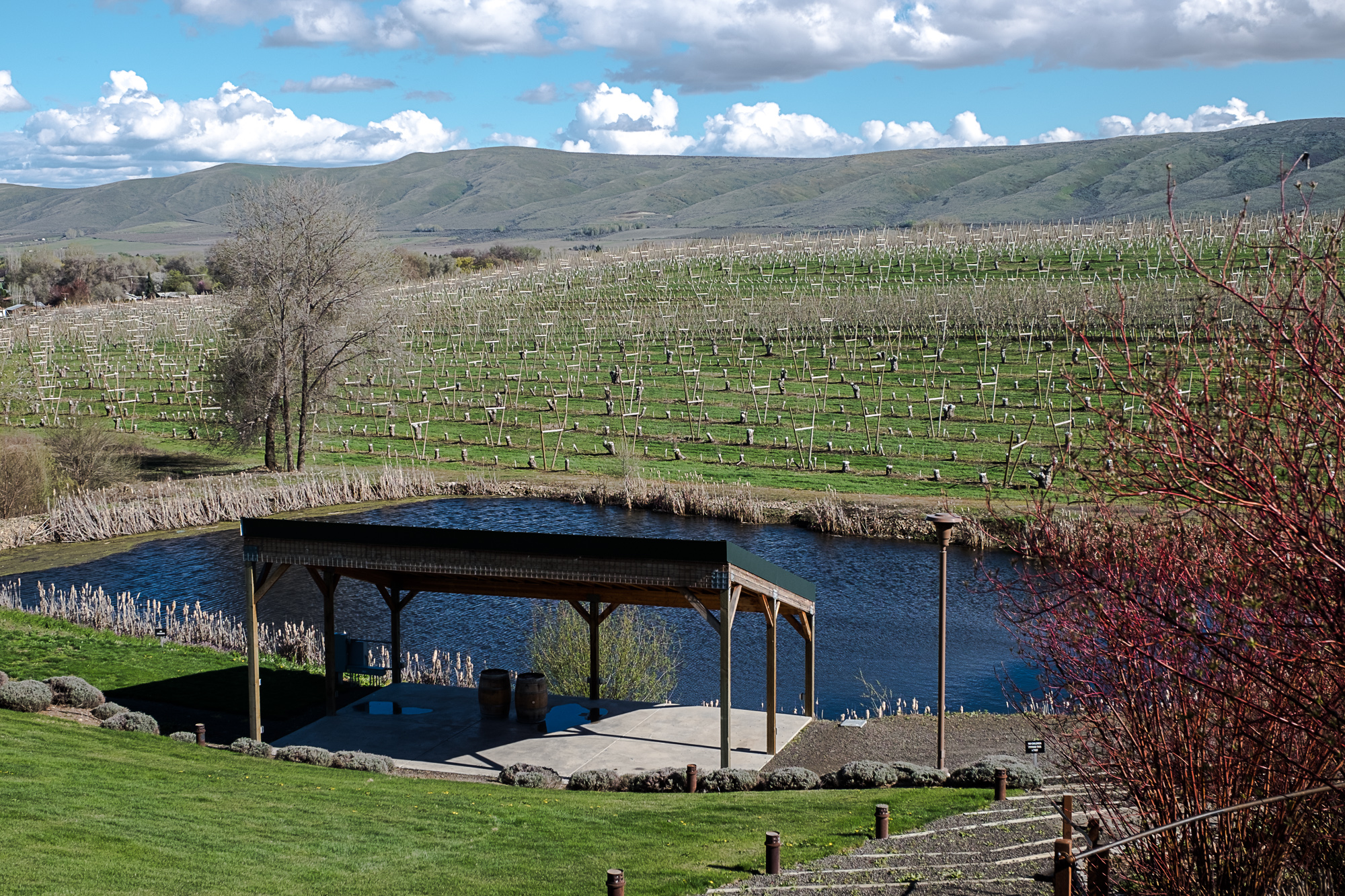 Gilbert Cellars' Hackett Ranch (Image: Paola Thomas/Seattle Refined)