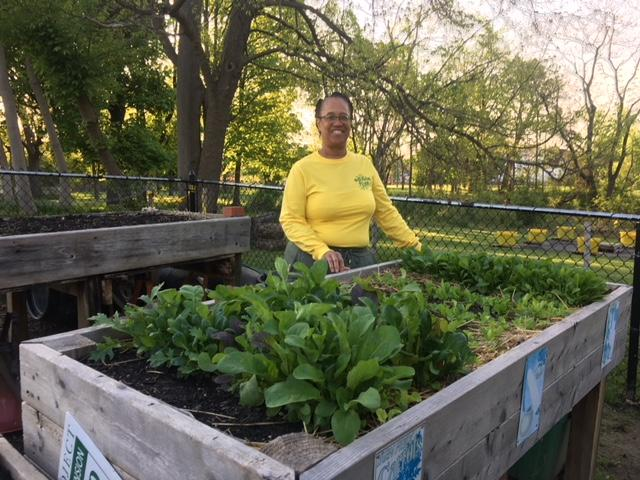 Edible Flint provides garden starter kits to residents in Genesee County. (Photo: Courtney Wheaton){&amp;nbsp;}<p></p>