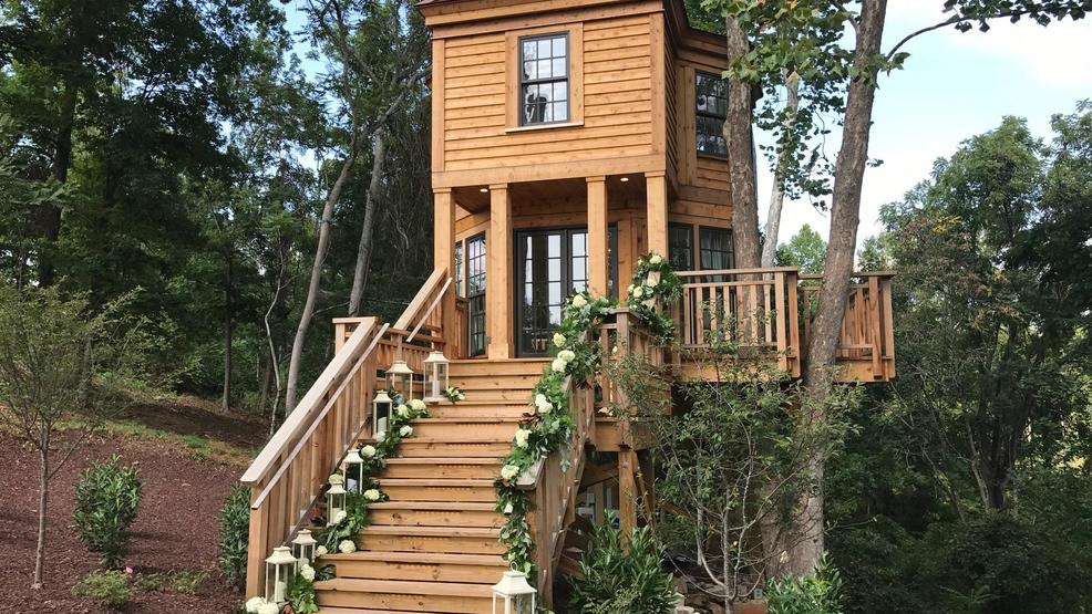 Bella Rose Treehouse Featured On Animal Planet S Treehouse Masters