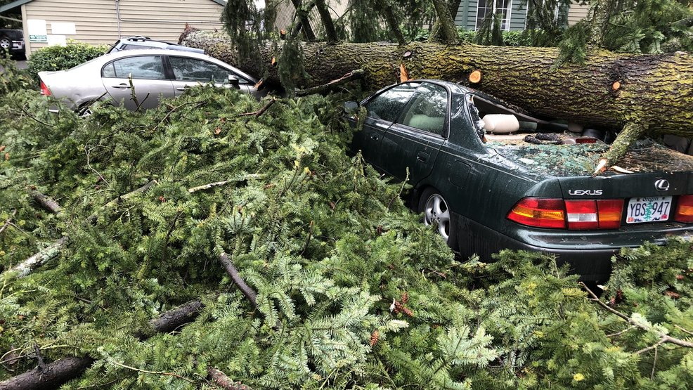 Strong Wind Storm Knocks Out Power To Thousands Across Western