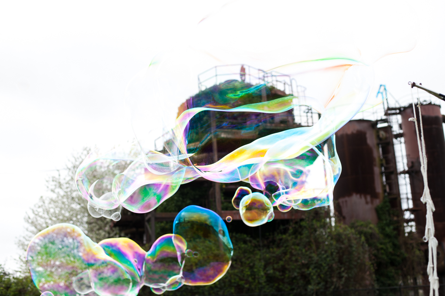 After a false start due to weather on April 13, Bubblemancers regrouped for their first annual NW Bubble Gathering at Gasworks Park on April 14. The enormous soap bubbles cast were completely out of this world! (Image: Elizabeth Crook / Seattle Refined)