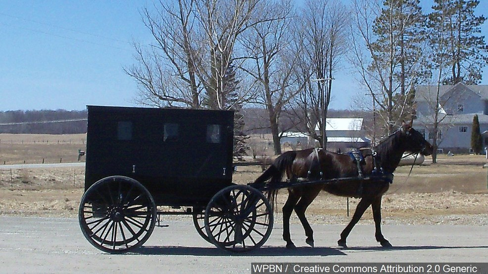 Car Crashes Into Amish Buggy In Md Seven People Flown To