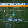 Two motorcyclists killed by falling tree limb in Barry County