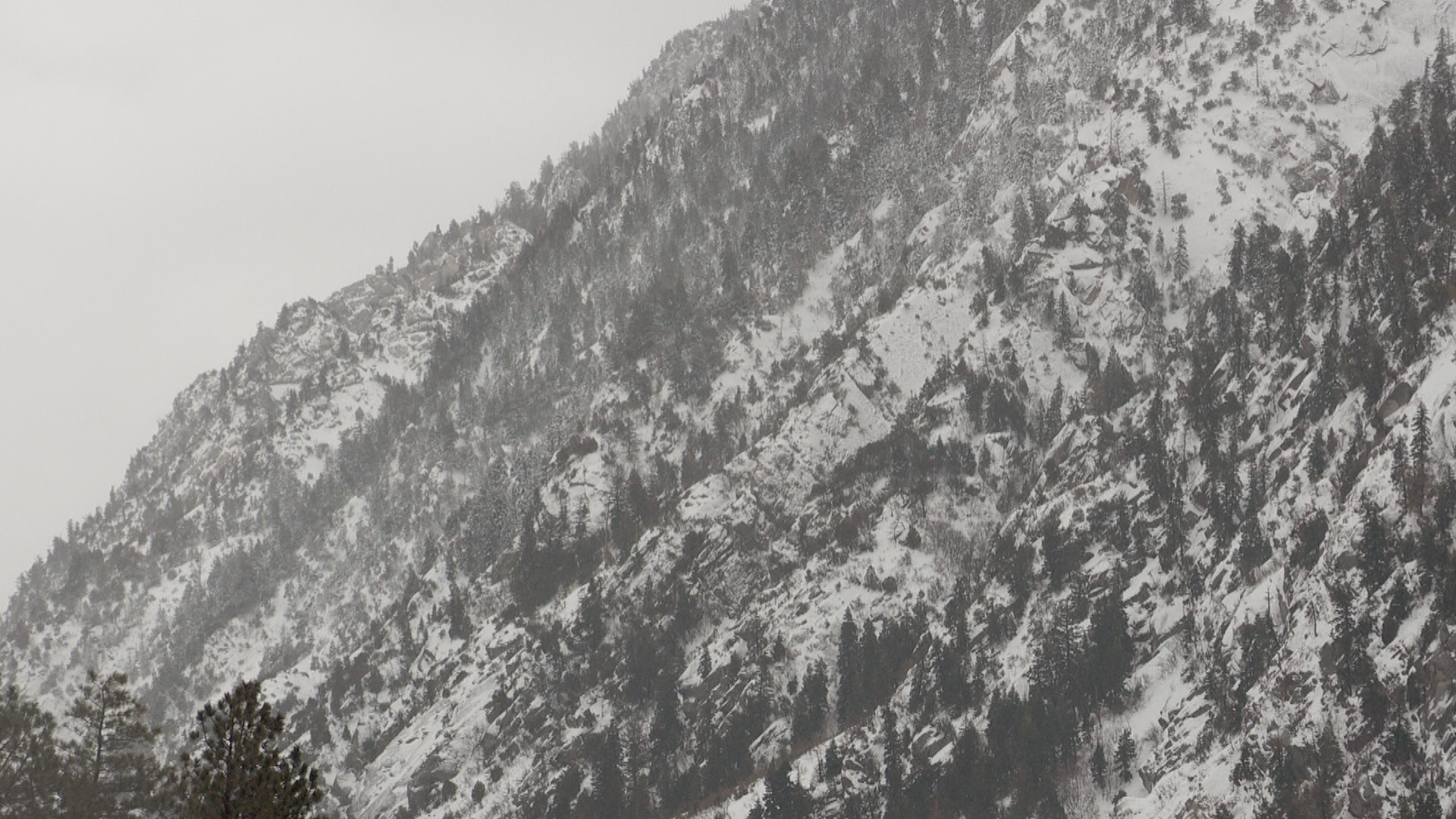 Avalanches are part of life in Little Cottonwood Canyon. (KUTV)