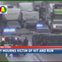 Investigators continue to search for drivers involved in deadly hit and run on I-10