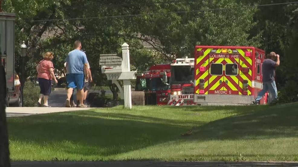 Tree trimmer electrocuted while working in tree near power lines | WSYX