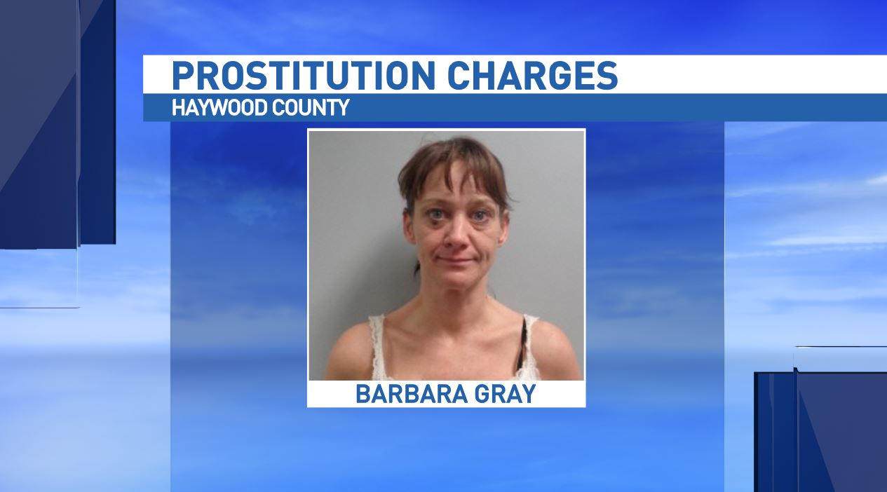 Canton police officers, with the help of state Alcohol Law Enforcement, arrested Barbara Dionne Gray at her home on Oak Street in Canton Friday morning and charged her with solicitation for prostitution and maintaining a dwelling for prostitution. (Photo credit: Haywood County Sheriff's Office)