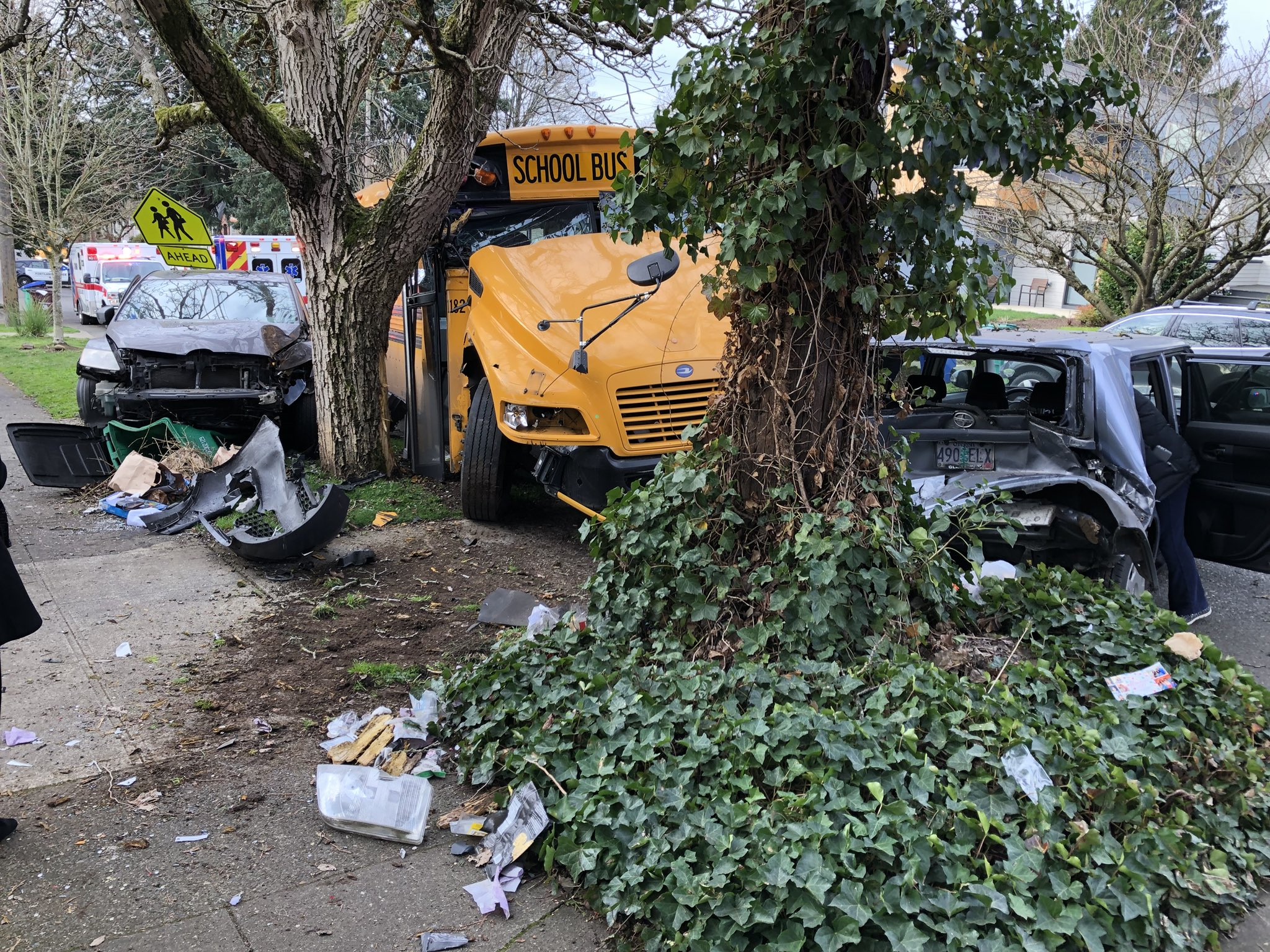 School bus crash 2.jpg