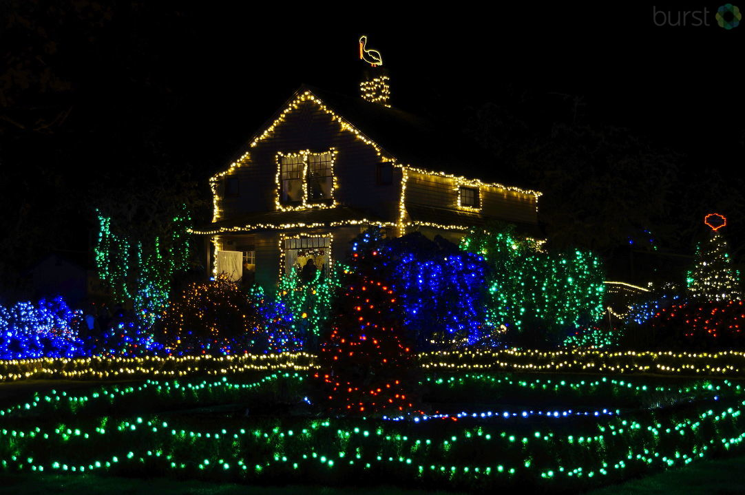 Debbie Tegtmeier shared this photo of holiday lights at Shore Acres via BURST.com