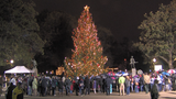 2016 Birmingham Christmas Tree Lighting (videos, photos)