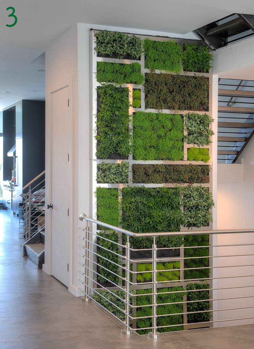 "#3 - Urban Blooms is a local non-profit that installs vertical gardens a.k.a. ""living walls"" into commercial and residential spaces. / Image courtesy of Urban Blooms"