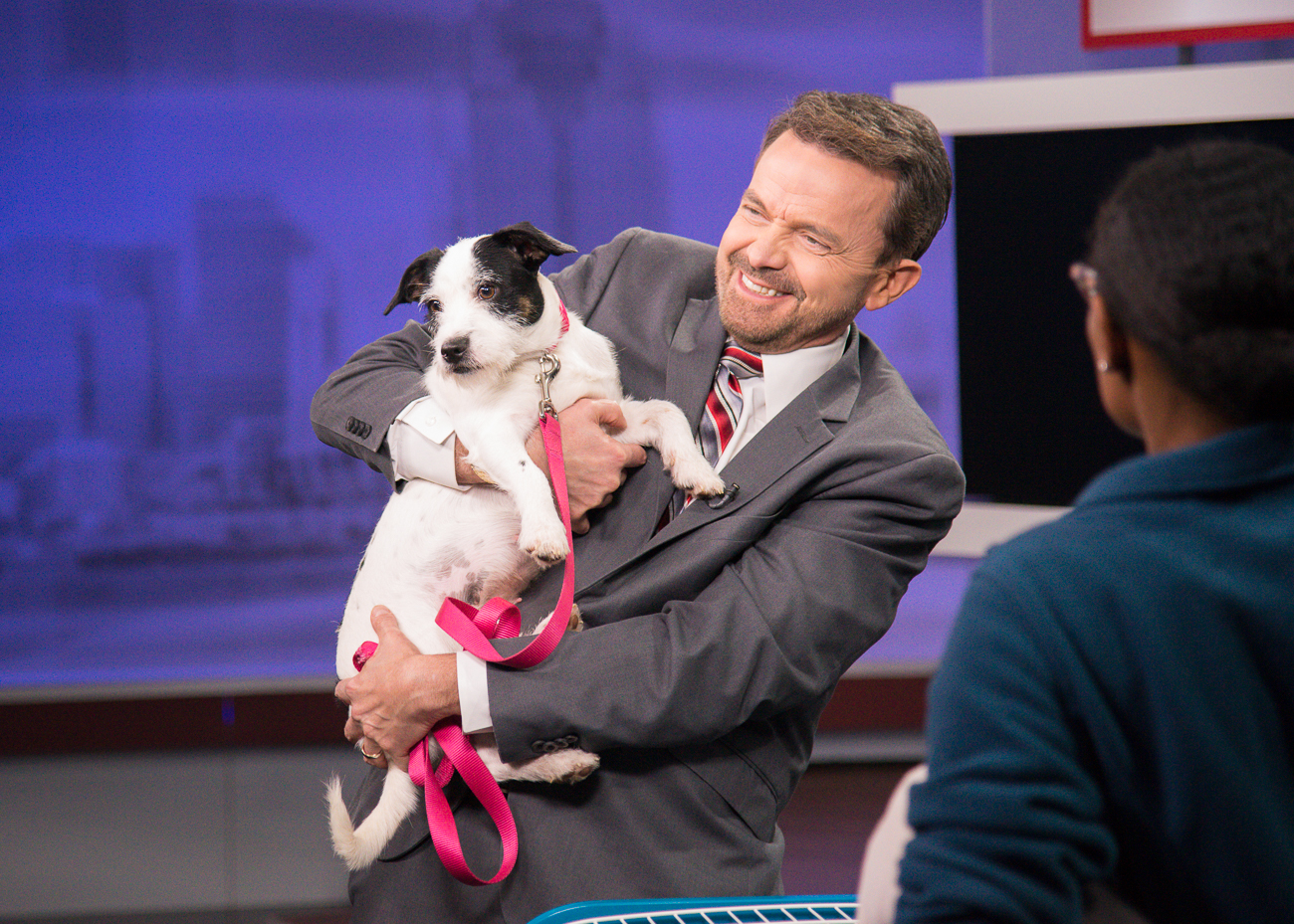 PICTURED: Paul Poteet, Local 12 meteorologist, holding Lucy, a 2-year-old Jack Russell terrier / ABOUT: The Society for the Prevention of Cruelty to Animals (SPCA) is an organization that seeks out new, loving owners for adoptable, adorable dogs and cats. While the pets in these photos are likely already adopted by the time this is published, you can find other dogs and cats like them by visiting SPCAcincinnati.org. The organization receives new animals often; Local 12 WKRC-TV features several of those pets every Tuesday on their morning and evening broadcasts and every Saturday during the morning broadcast. / Image: Phil Armstrong, Cincinnati Refined // Published: 10.24.18