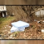 Steubenville council wants the city cleaned up