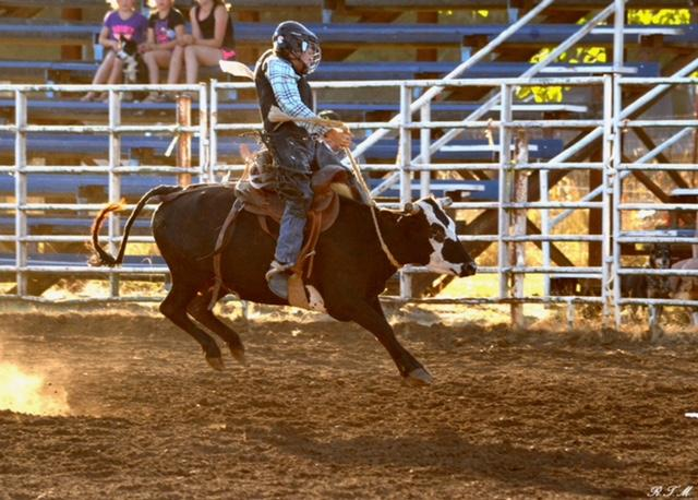 Say hello to Mason Stuller, a 14-year-old cowboy from Veneta who's rising as fast as his rides. (Photos courtesy Darci Stuller)