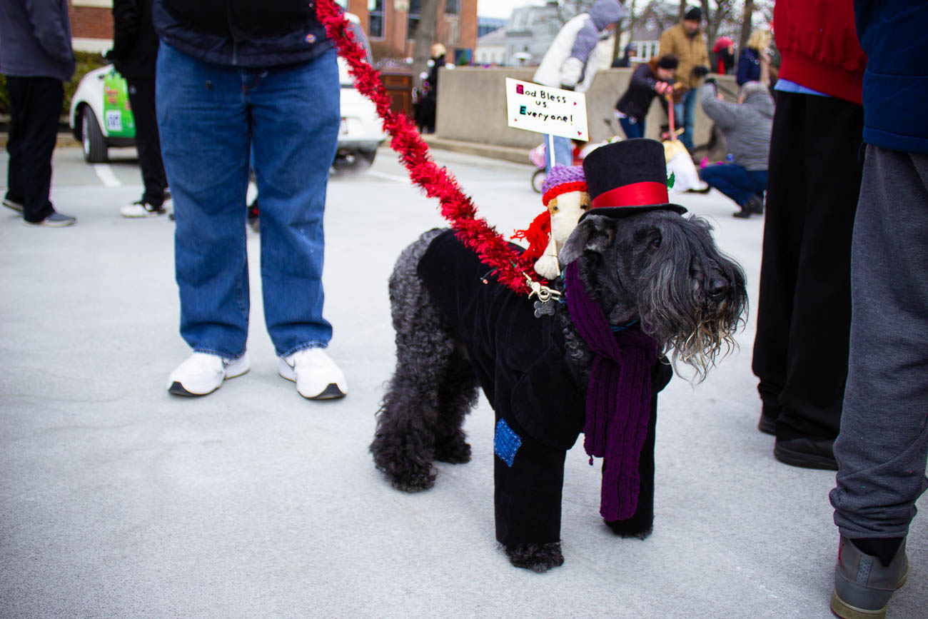 Bah humbug! Dog Cratchet and Terrier Tim came out to spread Christmas cheer at the annual Reindog Parade in Mount Adams on December 8. / Image: Katie Robinson, Cincinnati Refined // Published: 1.3.19