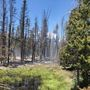 Fire crews work to secure burn areas as Monviso Fire activity picks up
