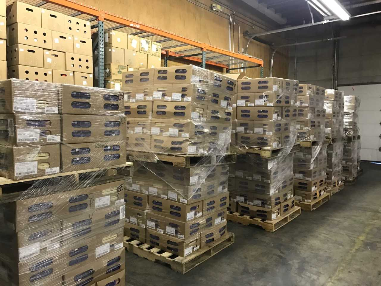 Northwest Harvest to distribute nearly 20K pounds of beef