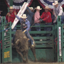 Reno Rodeo brings $55 million into local economy every year