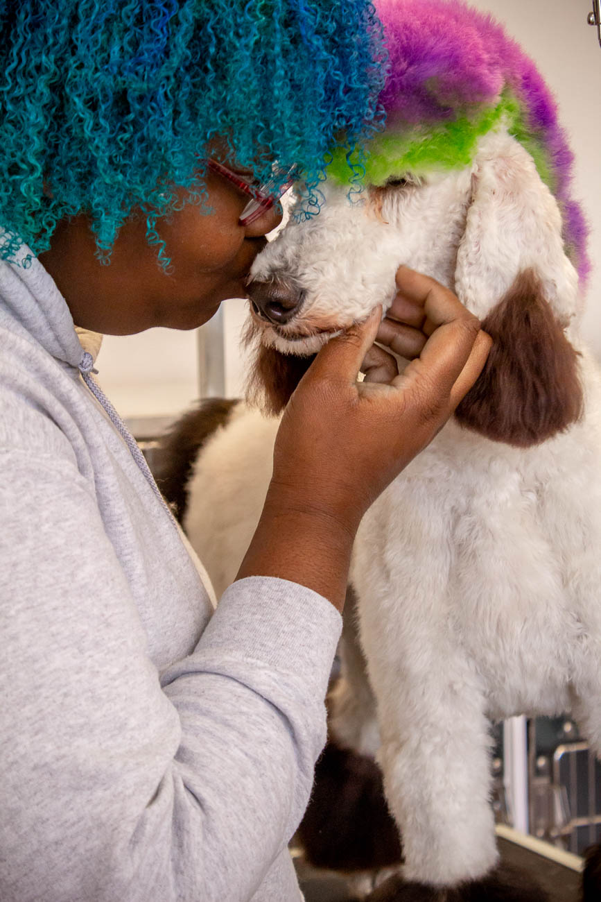 A groomer gives a loving kiss to her poodle's snout at Wuf Pet Spa / Image: Katie Robinson
