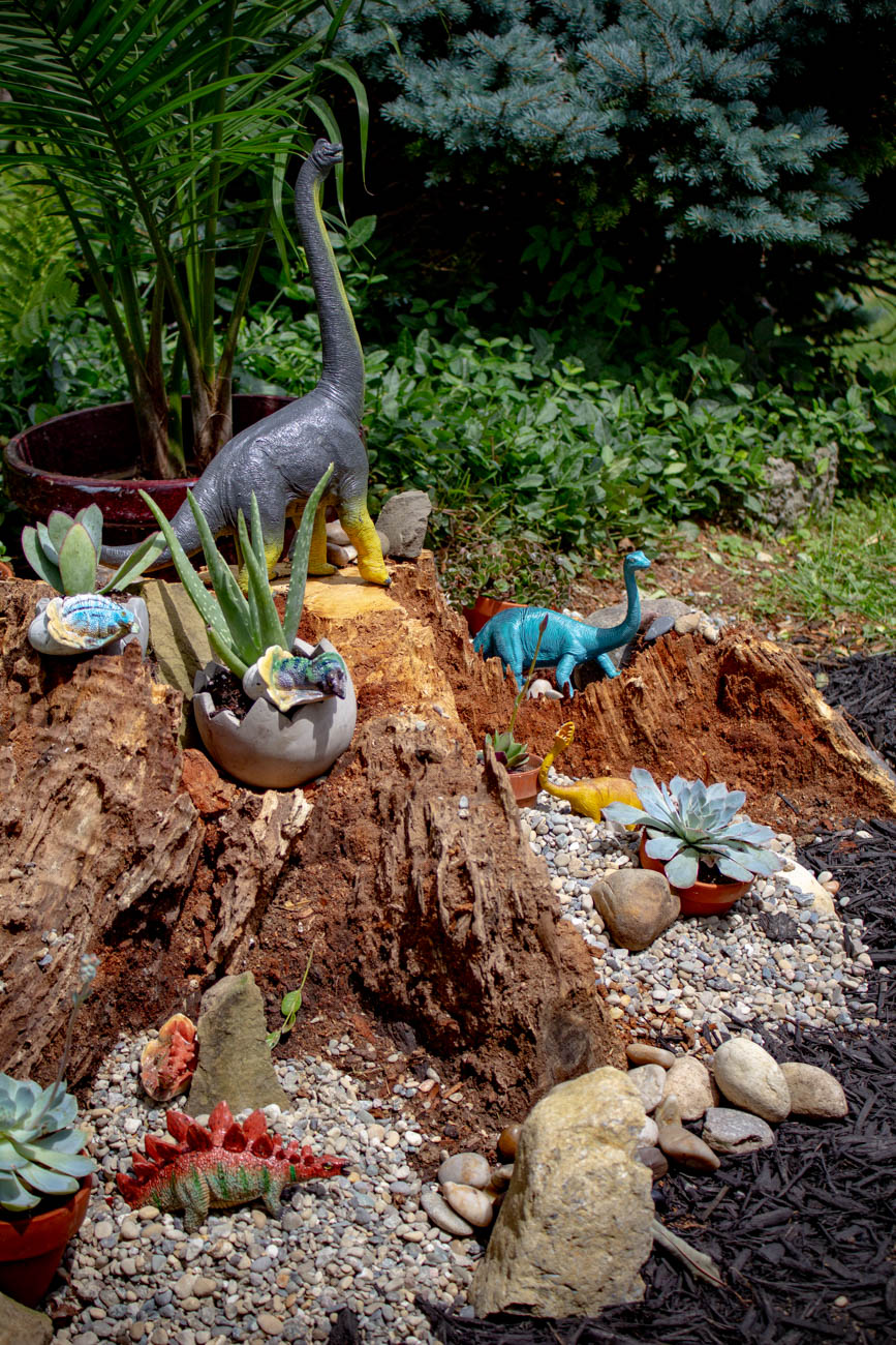What was once an unattractive tree stump is now a beautiful home for dinosaurs./ Image: Katie Robinson, Cincinnati Refined // Published: 6.24.19 <p></p>