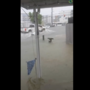 VACATION WASHOUT | Photos of Major flooding in Ocean City this weekend