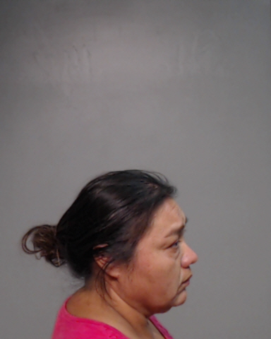 Investigators arrested Laura Leticia Vasquez, 45, of Alamo on suspicion of tampering with or fabricating physical evidence with intent to impair a human corpse, a second-degree felony. (Photo courtesy of the Hidalgo County Sheriff's Office)