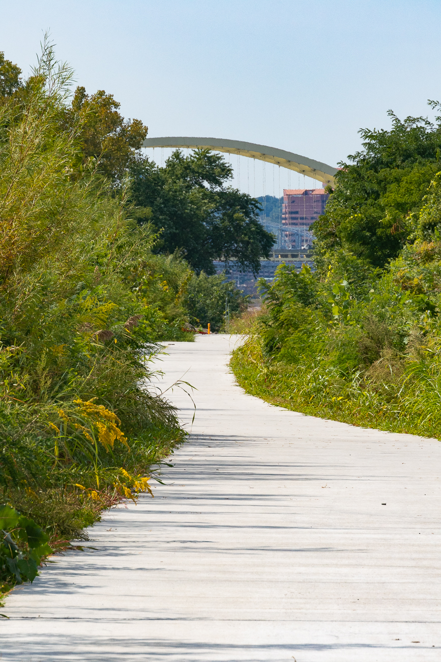 Ahren's Way, looking west toward Downtown / Image: Phil Armstrong // Published: 9.27.20