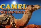 CAMEL WHISPERER STILL.jpg