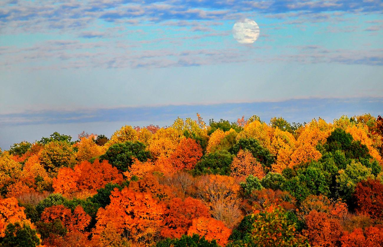 <p>PLACE: Brookville Lake in Indiana / Distance: 45 miles northwest of Cincinnati, a one-hour drive / Pictured is a full moon rising over brilliant colors around Brookville Lake. Located near the historic east fork of the Whitewater River Valley, the lake includes both Mounds State Recreation Area and Quakertown State Recreation Area. Immerse yourself in the fall colors with more than 25 miles of hiking trails or via boat. / Image: Frank Oliver // Published: 10.19.19</p>
