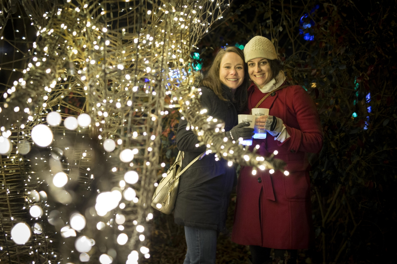 Friends of the National Zoo's hoppiest holiday event, BrewLights returns for a second year! Guests can enjoy beer tastings from a dozen breweries and sample savory foods from top local restaurants, all under the bright lights of Washington, D.C.'s favorite holiday tradition, ZooLights.  (Image: Courtesy Friends of the National Zoo)