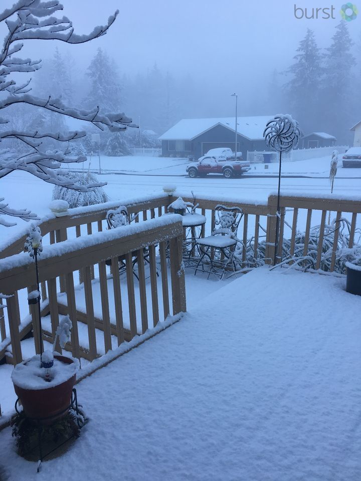 Snow in Kelso, Wash - Photo from Colleen Wilson.jpg