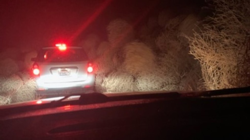Tumbleweeds bury cars on rural WA highway