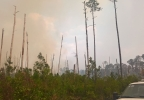west mims fire 3.jpg