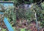Storm damage in Northeast Portland photo courtesy Jay Rogers.jpg