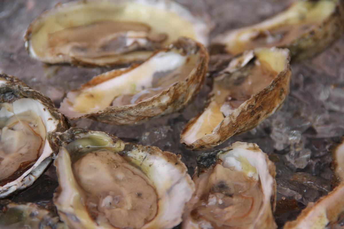Shuckin' it up! Oyster time at Washington Platform, Saloon and Restaurant / Taste of OTR, Saturday July 26, Washington Park (Image: Clay Griffith / Cincinnati Refined)